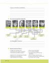 Team Deutsch 1. Kursbuch - Учебник